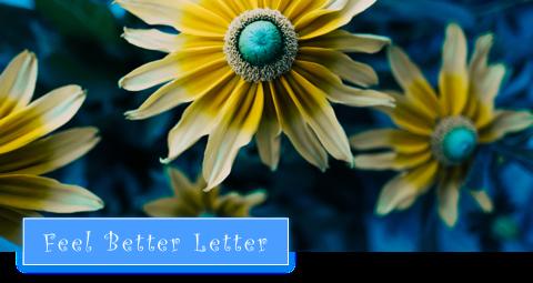 Warum Du den Mut haben musst, Dich lächerlich zu machen (Feel Better Letter Nr. 45)