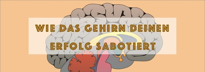 Wie Dein Gehirn Deinen Erfolg sabotiert und was Du tun kannst