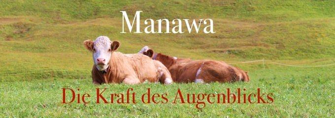 MANAWA – JETZT ist der Moment der Kraft