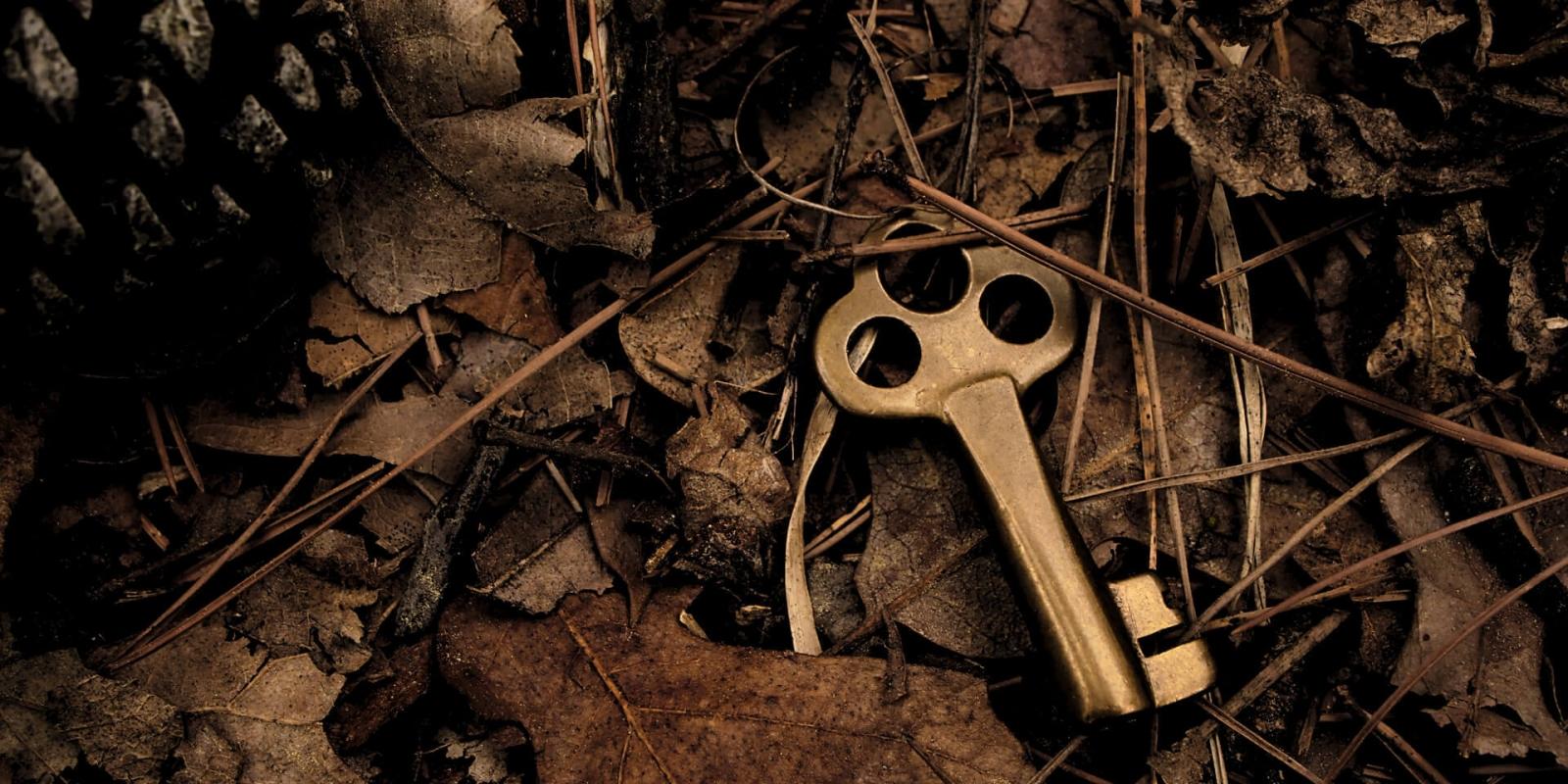 Mangel Lebensfreude Schlüssel